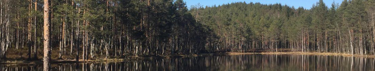 PÅ TUR!    Ut i naturen med Svein Blålid