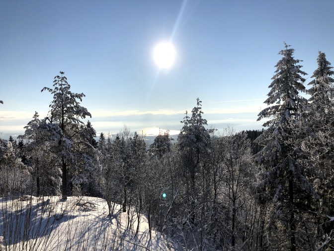 På kryss og tvers i Nordmarka